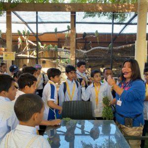 best schools in khalifa city